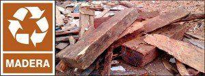Recogida de maderas