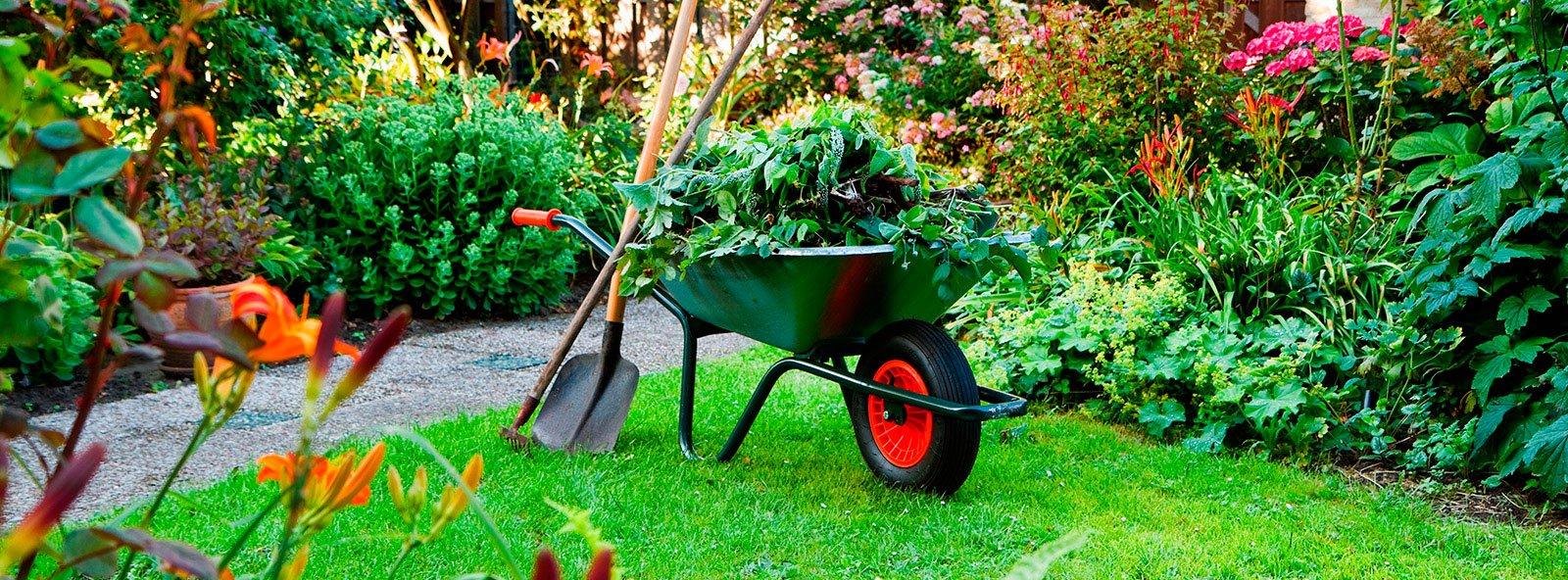 jardinería.