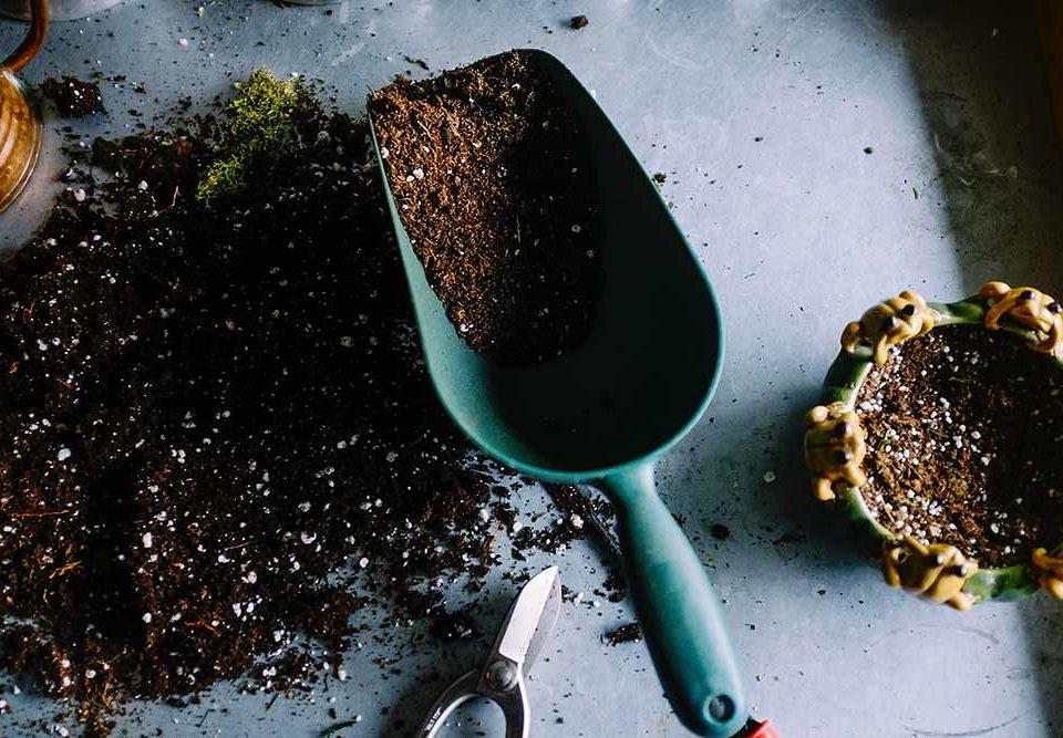 ¿Cómo reciclar los residuos orgánicos en Elche?